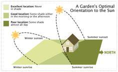 Where to Put the Vegetable Garden on the Smart Gardener Blog