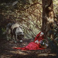 Little Red Riding Hood sitting & leaning against a tree & wolf art Film Disney, Disney Movies, Des Photos Saisissantes, Image Beautiful, Images Esthétiques, She Wolf, Big Bad Wolf, Foto Art, Red Hood