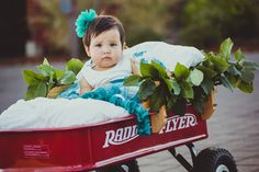Such a Great Idea to Use a Radio Flyer for the Flower Girl!