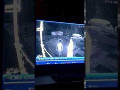 Un cocodrilo ataca a una pareja que estaba disfrutando de un baño en la piscina de un hotel