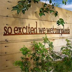 So Excited We Wet Our Plants Rusty Garden Sign... cute!