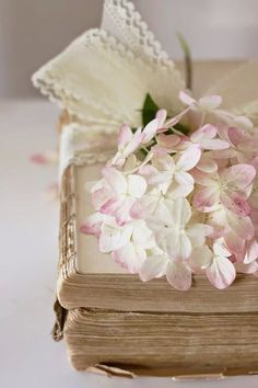 old books, and flowers tied with a bow, beautiful, from Rose cottages and gardens, Britain Old Books, Vintage Books, Edith Holden, Vibeke Design, Book Flowers, Shabby Flowers, Book Letters, Pink Hydrangea, Hydrangeas