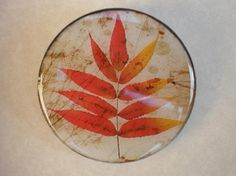 broche resina círculo grande otoño 1  resina,madera resina
