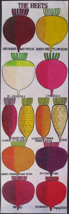 Gregory Blackstock, Beets. Here's a sweet bevy. Love their invigorating roundness. Bulbous planets of vibrating color, crowded together, yet precise-perfect. Stubby-hair heads look like gap-toothed grins. A taxonomic chart with soul-- not so taxing.    I like the name of the first beet. Early Wonder. And that's what Blackstock does for us doesn't he? Encourages us wriggle our fingers down deep, past the adult-worried flotsam, to discover again our early wonder. And draw it out, silver…