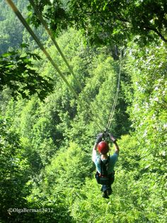 Mango & Tomato: Let Asheville Sweep You Off Your Feet: Asheville NC Part Thrill, Infatuation & Romance. In Other Words, Zip Lining, Jonas Gerard & The Biltmore Estate Asheville North Carolina, Western North Carolina, Places To Travel, Places To See, Ashville Nc, Southport, Costa Rica, Teresa, Nc Mountains
