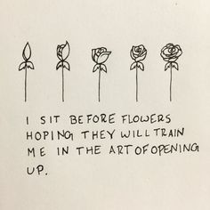 i sit before flowers hoping they will train me in the art of opening up.