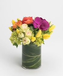 This beautiful collection of vibrant Spring blooms - including tulips, orchids, and spray roses - is gathered in a leaf-lined cylinder vase and is sure to bring the warmth of Spring.