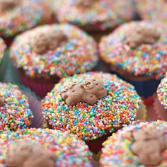 Tiny Teddy Cupcakes Easy cake option for Teddy Bears Picnic