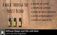 Save this diffuser recipe if you enjoy the smell of the great outdoors!  FREE Emotional Guide to Essential Oils EBook --> http://ift.tt/2ztEH47            #가을 #fall #autumn #가을신상 #하늘 #날씨 #패션 #데일리룩 #가을옷 #가을네일 #leaves #pumpkin #fallcolors #trees #colorado #autumnleaves #seasons #바람 #essentialoil #doterra #aromatherapy