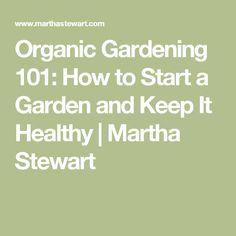 Organic Gardening 101: How to Start a Garden and Keep It Healthy | Martha Stewart