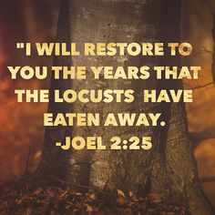 Growing Up In The Word : Restoration