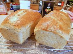 Brewers' Bread