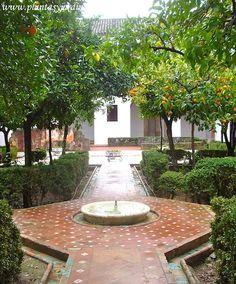 tipico-patio-de-estilo-mudejar-con-la-fuente-en-el-centro-copia.jpg 500×602 píxeles
