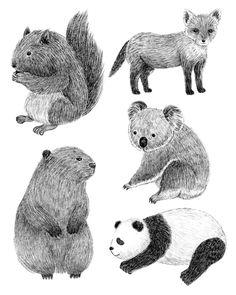 Furry Animals