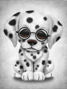 Dalmatian Puppy Wearing Reading Glasses | Jeff Bartels