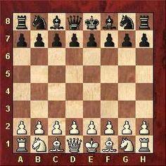 O xadrez se joga entre dois jogadores, que conduzem cada um as peças de uma cor colocada sobre um tabuleiro de 64 casas.     Cada jog...