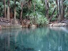 Mataranka in Northern Territory Australia.  Natural thermal spring, water is like glass!  Amazing place, would love to go back.
