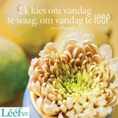 Afrikaans Quotes, Hart, Daily Motivation, Verses, Songs, Inspiration, Biblical Inspiration, Motivation, Song Books
