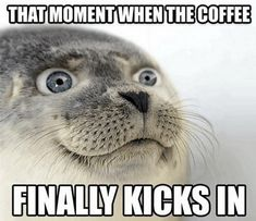 XD HAHAHA!!!!! ME!!! • 50 Coffee Memes - Memes About Coffee