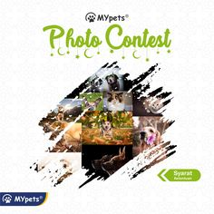 Photo Contest, Video Game, Artwork, Work Of Art, Photography Challenge, Video Games, Videogames