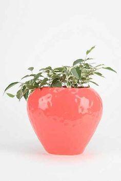 Plum & Bow Strawberry Planter