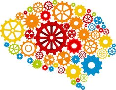 Magnesium is aanwezig in al onze lichaamscellen en is betrokken bij meer dan 300 enzymatische processen, waaronder de energieproductie, maar ook de hersenen