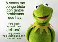 Rana René, meme, mexican humor, spanish, Kermet the frog. Family Bible Study, Spanish Jokes, Funny Spanish, Pioneer Gifts, Mexican Humor, Bible Truth, Funny Posts, Funny Images, Funny Quotes