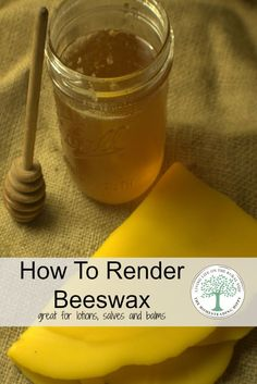 If you keep bees, you'll eventually wind up with a bunch of wax from the combs.  Learn how to render it to a golden sheet of wax perfect for lotions, soaps, salves and balms! The Homesteading Hippy via @homesteadhippy
