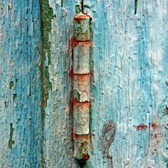 rusty blue door detail by Zé Eduardo