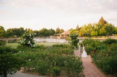 Rose Garden at Heather Farms in Walnut Creek, CA