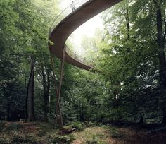 Gallery of EFFEKT's Spiraling Observation Tower Will Take Visitors 45 Meters Above the Treetops - 4