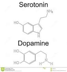 Image result for dopamine molecular structure tattoo