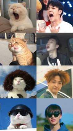 Check out the post right here for perfect Game of Thrones memes. These beautiful memes will brighten up your day. Got7 Yugyeom, Youngjae, Jaebum Got7, Got7 Jb, Markson Got7, Meme Got7, Got7 Funny, Funny Kpop Memes, Meme Meme