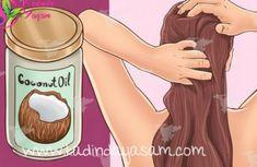 Saçınıza hindistan cevizi yağı sürün beyaz saçlara tüm saç sorunlarına veda edin