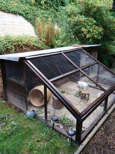 Rabbit paradise, outdoor enclosure with sandbox - Kaninchen - Animal Rabbit Cages Outdoor, Outdoor Rabbit Hutch, Indoor Rabbit, Rabbit Farm, House Rabbit, Pet Rabbit, Rabbit Enclosure, Tortoise Enclosure, Bunny Hutch