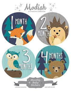 FREE GIFT, Woodland Nursery Decor Boy, Woodland Monthly Baby Stickers Boy, Baby Boy Woodland Month Stickers, Fox Bear Owl, Woodland Nursery