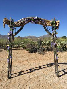 Southern Arizona wedding arch made with saguaro and cholla skeleton