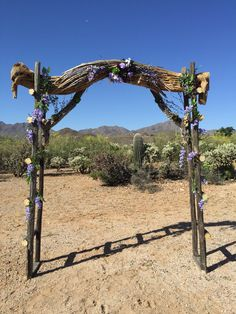 Southern Arizona wedding arch made with saguaro and cholla skeleton