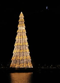 by Paulo Roberto Bártholo on Unusual Christmas Trees, Merry Christmas To All, Outdoor Christmas, Christmas Pictures, Christmas Tree Decorations, Christmas Lights, Christmas Holidays, Xmas Trees, Everyday Holidays