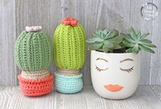 Tall and Short Crocheted Cactus in a pot that stands up.