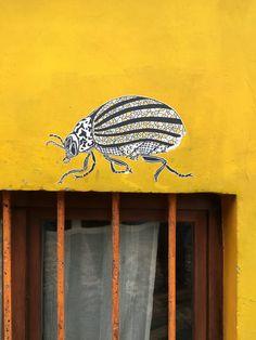 SORRY, NOT SORRY: Street art in prachtig Gent