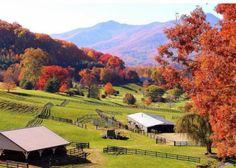 Waynesville North Carolina