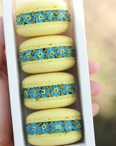 Forget me not 💙 What a beautiful name for a flower 💙 Blog Patisserie, Macaroon Cookies, Cute Baking, Macaron Recipe, Cute Cookies, Smoothie Drinks, Sandwich Cookies, Cute Food, Cake Art
