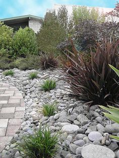 Beautiful River Rock Landscaping Images River Rock Landscaping Outdoor Yard With River Rock And Drought Tolerant Plants River River Rock Landscaping, Landscaping Images, Landscaping With Rocks, Front Yard Landscaping, Rock Mulch, Landscaping Jobs, Landscaping Software, Backyard Garden Landscape, Small Backyard Gardens