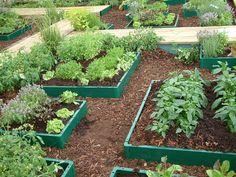 potager | potager bacs et contours graviers jardin potager libre