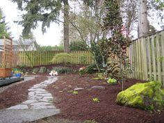 Dog Friendly Backyard Ideas 25 best ideas about dog friendly backyard on pinterest diy dog Grass Free Landscaping With A Winding Stone Path Dog Friendly Yard