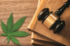 The most common concern and question people have about CBD is, is CBD legal? In this article we will discuss the current legality of CBD in the U.S.