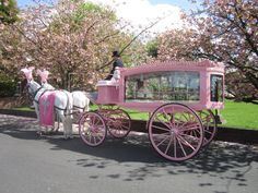 How about something more unique than your traditional black or white horse drawn hearse? A pink horse drawn hearse, available from Thos. Furber & Co. Ltd. Funeral Directors - just contact www.thosfurberandco.ltd.uk