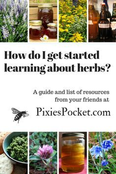 How do I learn about herbs? A guide and list of resources from pixiespocket.com