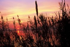 The Albufera in Valencia at Sunset